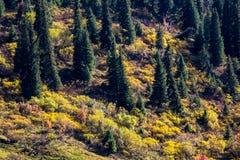 Tianshan mountain scenery Stock Photography