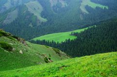 Tianshan mountain scenery Royalty Free Stock Photo