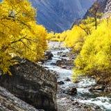 Tianshan Mountain in Xinjiang, China Stock Photos
