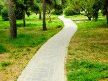 Tiantan park path. Stone path inside Tiantan Park in Beijing China Stock Photos