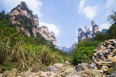 Tianzi Shan Mountain Peak i Zhangjiajie Arkivbild