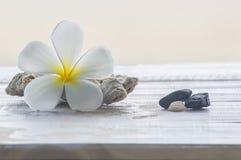 Tiarebloemen, koralen en stenen stock fotografie