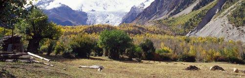 Tibétain d'horizontal Image libre de droits
