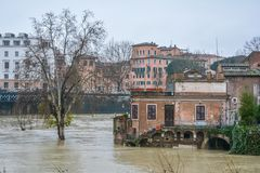 Tiber food near Tiberina Island, Rome. The Tiber Island is the only island in the part of the Tiber river which runs through Rome. Tiber Island is located in Stock Images