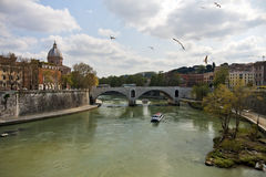 Tiber river in Rome Stock Photos