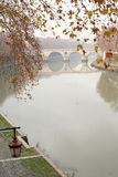Tiber River In Rome,Italy. Autumn leaves twig on background with ancient bridge across Tiber river. Rome, Italy royalty free stock images