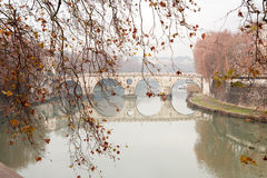 Tiber River In Rome,Italy. Autumn leaves twig on background with ancient bridge across Tiber river. Rome, Italy royalty free stock image