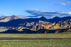 Tibet Ali Fotografia de Stock Royalty Free