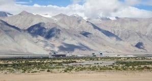 Tibet ali Royalty Free Stock Images
