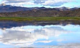 Tibet ali Stock Images