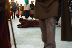 Tibet Buddhist Pilgrim Prostrating Barkhor Lhasa Royalty Free Stock Photo
