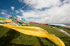 Tibet flag Royalty Free Stock Photos