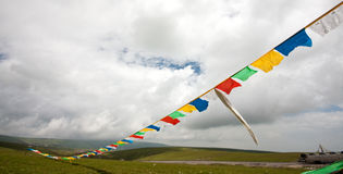 Tibet flag line Stock Photo