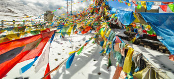 Tibet flags Royalty Free Stock Image