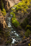Tibet-Fluss Lizenzfreies Stockbild