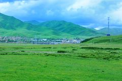 Tibet GanNan's grassland Royalty Free Stock Photo