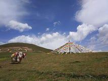 Tibet 1 stockfoto