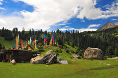 Tibet hamlet Stock Photos