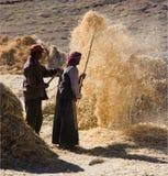 Tibet - Havest Zeit Stockfotografie