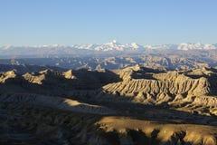 Tibet: het bos van de zandaklei Royalty-vrije Stock Afbeelding