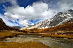 Tibet-Hochebene Lizenzfreie Stockbilder