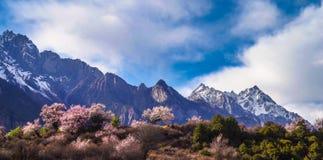 Tibet i den tidiga våren Royaltyfri Foto