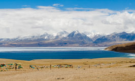 Tibet. Lake Mansarovar. Royalty Free Stock Photography