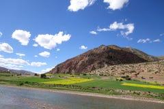 Tibet landskap Royaltyfri Foto