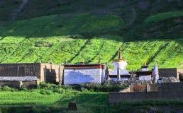 Tibet landskap arkivbild