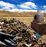 Tibet lot of antlers royalty free stock photography