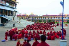 Tibet monk Meeting for exam royalty free stock photo