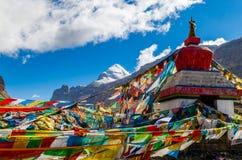 Free Tibet. Mount Kailash. Stock Image - 42009471