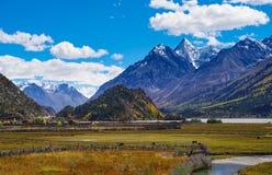 Tibet plateau Royalty Free Stock Photos
