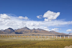 Tibet: railroad bridge Royalty Free Stock Images
