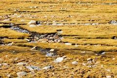 Tibet scenery of China Royalty Free Stock Photos