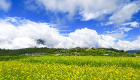 Tibet scenery. Gyironggou is located in the southern slope of Himalaya Range, with an average altitude of 4000 meters, surrounded by mountains, clouds. Southwest royalty free stock photos