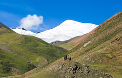 Tibet scenery. Southern Tibet, rolling hills, the snow-capped mountains, mountain is very vicissitudes of life, everything is in telling the history of the Royalty Free Stock Photos