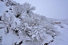 Tibet-Schnee Stockfotografie