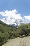 Tibet snow mountain with Grassland Stock Photography