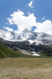 Tibet snow mountain with Grassland. In China Stock Images