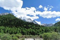 Tibet snow mountain with Grassland Stock Photos