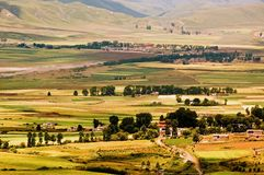 Tibet-Sommer Lizenzfreie Stockfotos