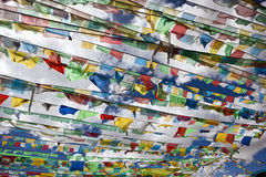 Tibet: tibetan prayer flags Royalty Free Stock Photos