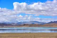 Tibet Yamdrok lake snow mountain lake Yangzhuoyongcuo. Yamdrok lake(Yangzhuoyongcuo) 2016 in Tibet, the sunset, the snow-capped mountains, clear lakes, the sheep Stock Photos