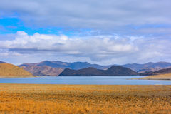 Tibet Yamdrok lake snow mountain lake Yangzhuoyongcuo. Yamdrok lake(Yangzhuoyongcuo) 2016 in Tibet, the sunset, the snow-capped mountains, clear lakes, the sheep Royalty Free Stock Photo