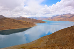 Tibet Yamdrok lake snow mountain lake Yangzhuoyongcuo. Yamdrok lake(Yangzhuoyongcuo) 2016 in Tibet, the sunset, the snow-capped mountains, clear lakes, the sheep Royalty Free Stock Photos