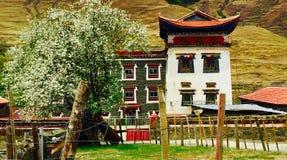 Tibetaanse huizen Stock Fotografie