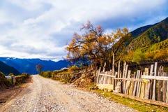 Tibetaanse plateauscène stock afbeelding
