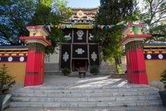 Tibetaanse tempel Stock Afbeeldingen