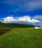 Tibetaanse Weide Royalty-vrije Stock Fotografie
